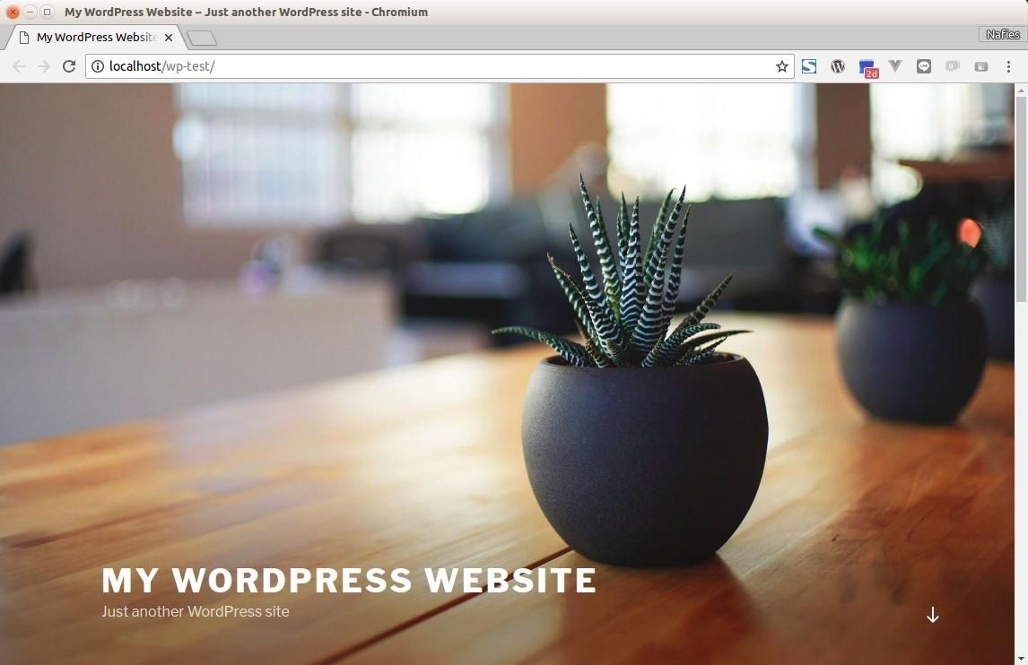 Installed Wordpress Site