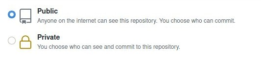 Github Repository Privacy